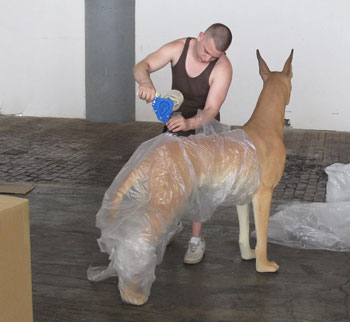 Our new warehouse employee, Josh, repacking the Great Dane after photography