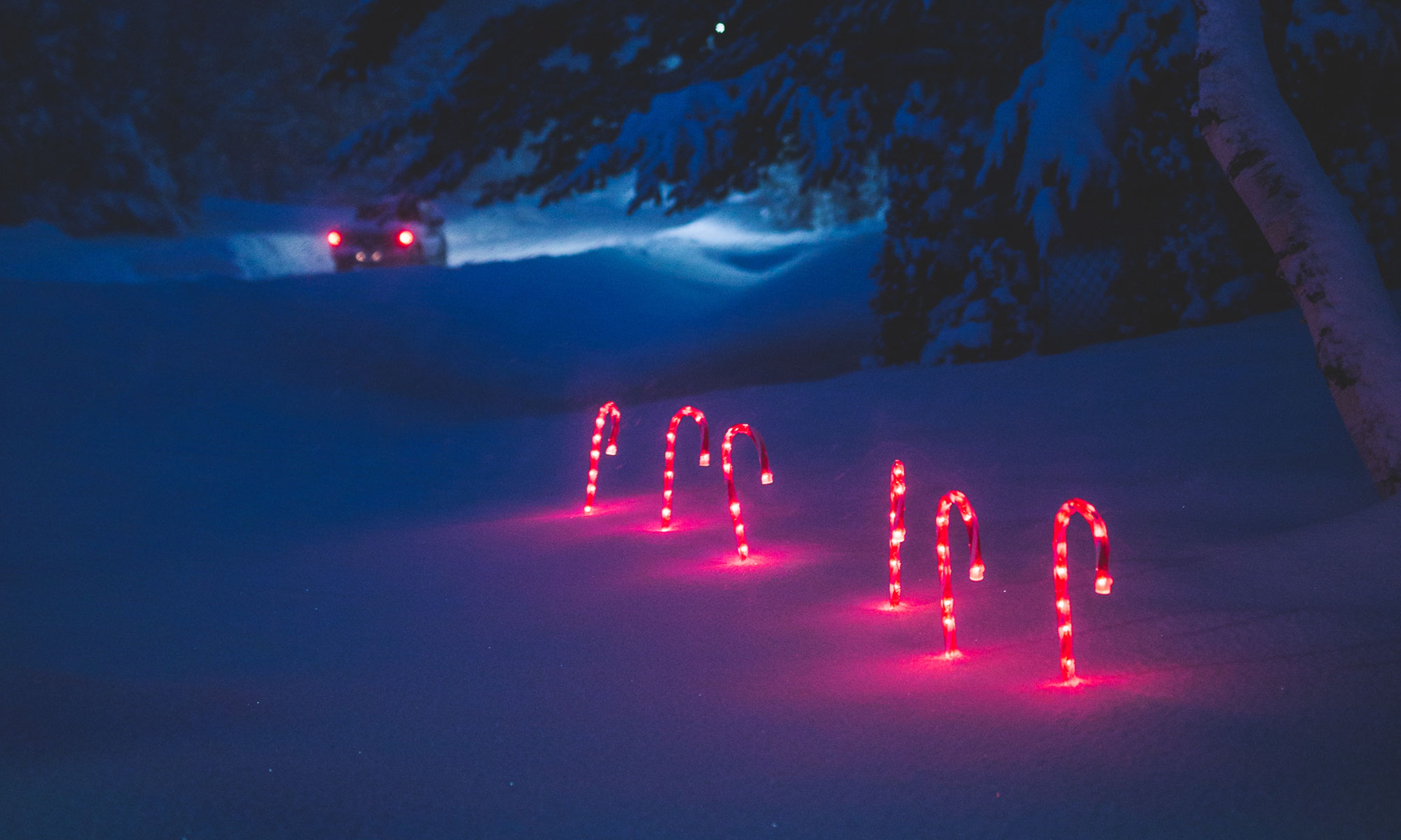 Lighted candy canes in snow